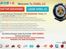 LIVE DINGDONG TOGEL